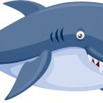 シュノーケリングや海水浴とサメの危険性について